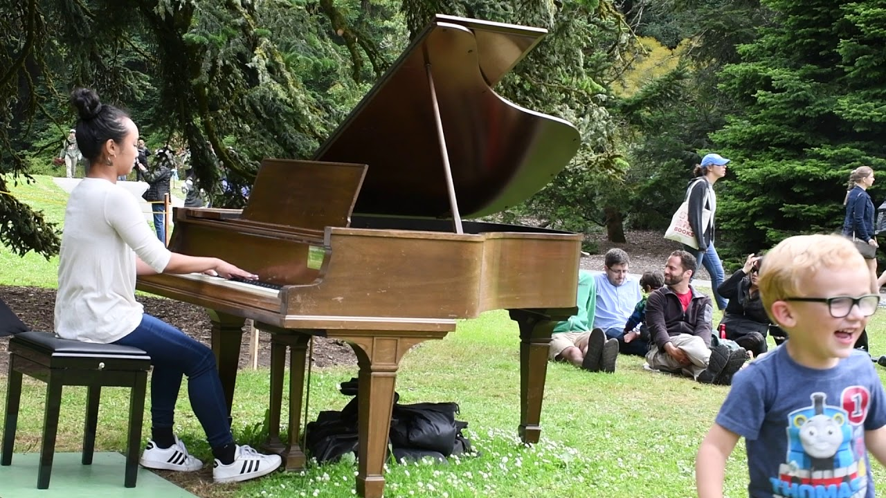Flower Piano in San Francisco's Botanical Garden 2018, a Pianist Playing on the lawn
